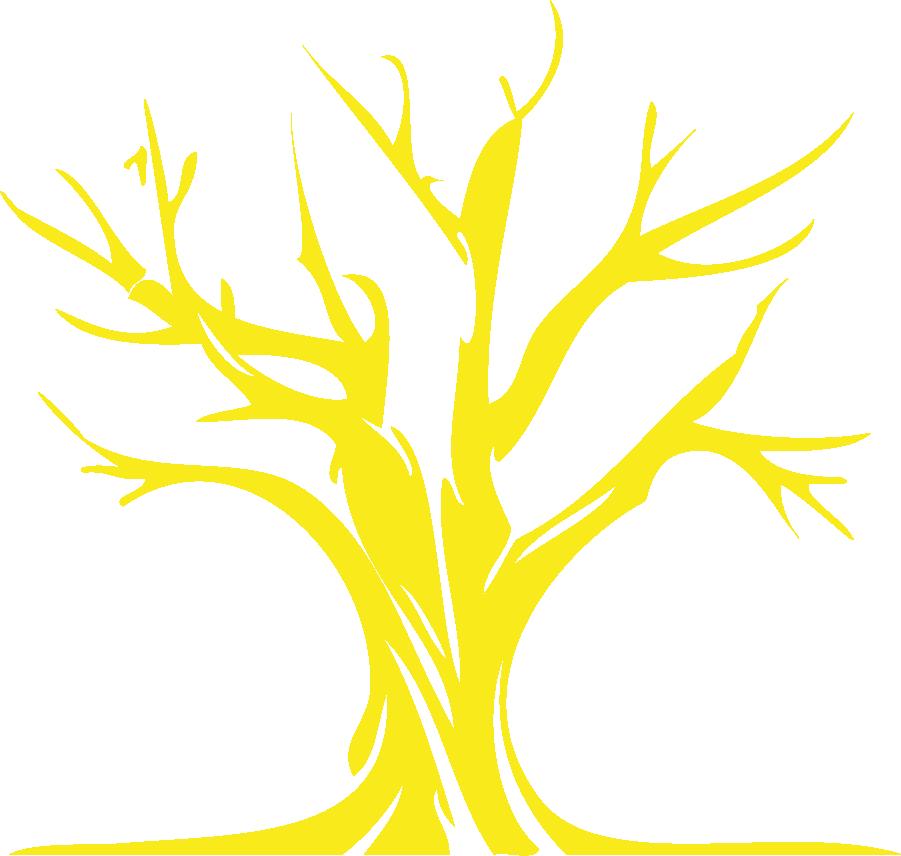 Medienproduktion aus Bremen - 24OliveTrees